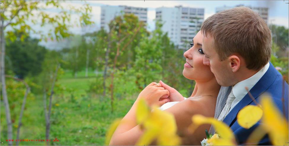 Свадьба Андрея и Ирины21_20х40