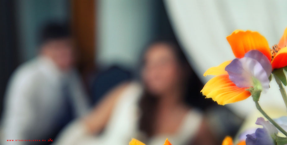 Свадьба Алексея и Натальи24_140612