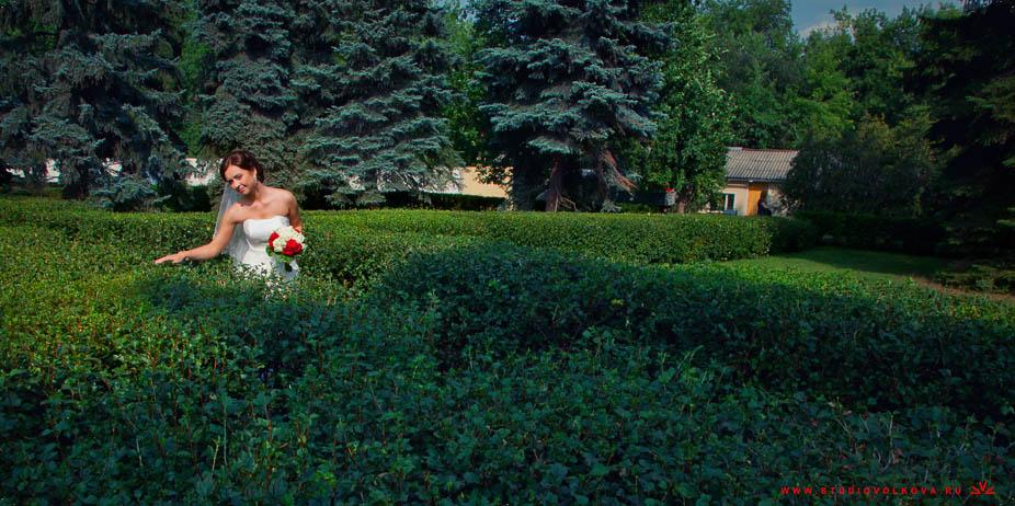 Свадьба Андрея и Марии18_160813