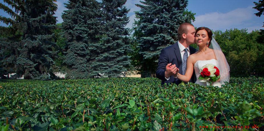 Свадьба Андрея и Марии22_160813